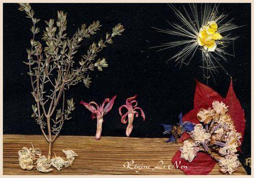conte-paysage-reve-fleurs pressees.jpg
