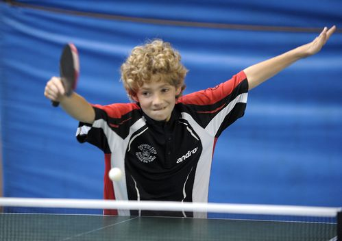 Tennis-de-table-la-motte-10-juin-2012-photo-N-2.jpg