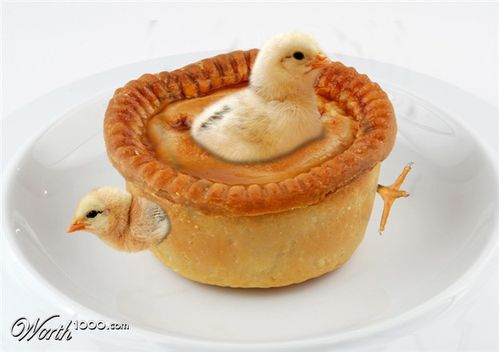 Tourte-poussins.jpg