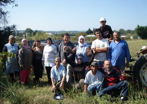 équipe de 2011
