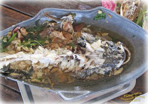 Pêche Ubolrath 18 modifié-1
