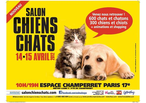 Salon chiens et chats la passion de dharma for Porte de champerret salon chiens chats