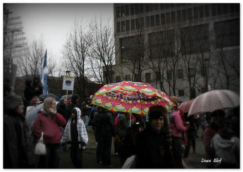 2012-04-10PrintempsErable.jpg