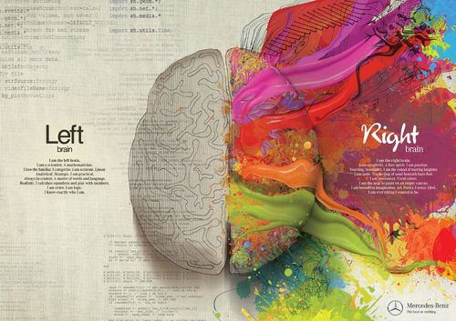 brain-right-left