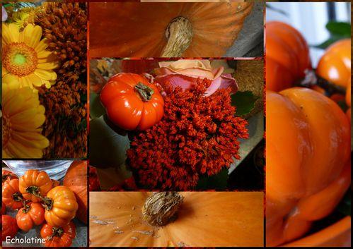 automne (3)