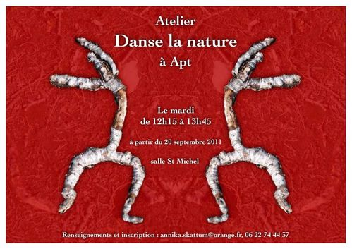 danse-la-nature cs4