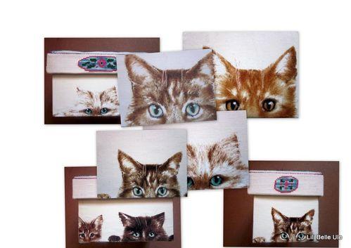 2011-03-07 la boite à chats3