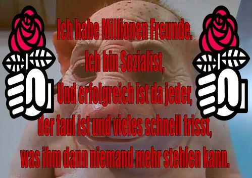 Attention.-.SOZIALISTENSCHWEIN.A1.jpg