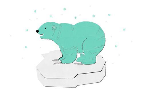 ours polaire valerieassmat