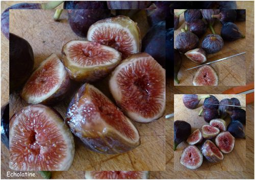 figues (3)