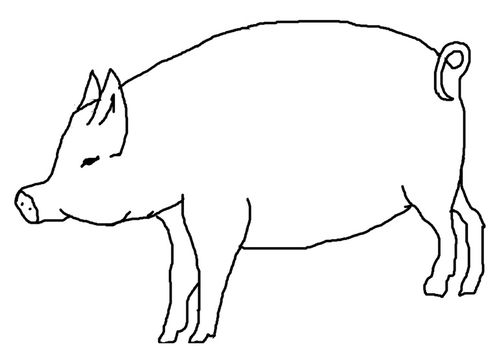 Pin cochon ski coloriage sur animaux org on pinterest - Cochon dessin colorier ...