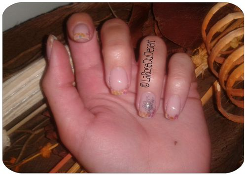 2012.06.22 french hexagones holo (7)