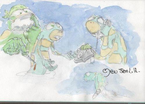 salamandre-3.jpg