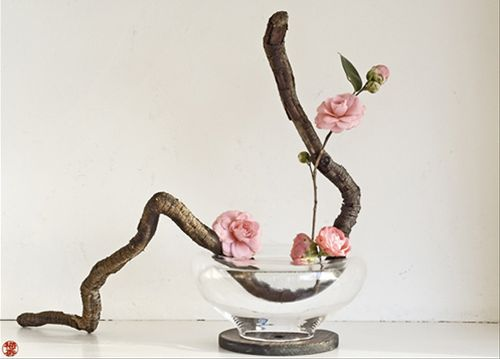 ikebana (art floral nippon)