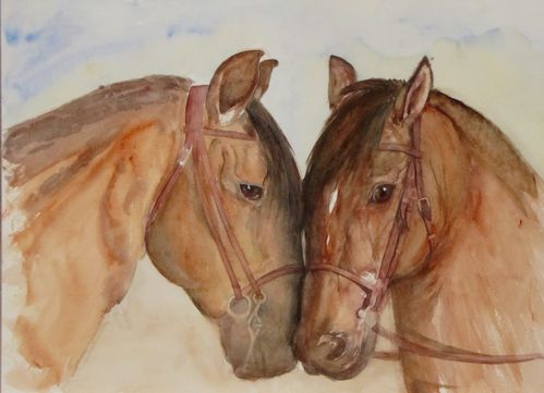 Aquarelles le blog de bern 39 art - Cheval dessin couleur ...