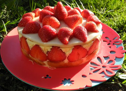 fraisier 2