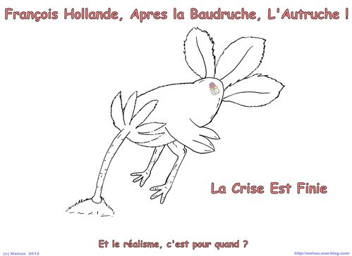 Autruche Hollande