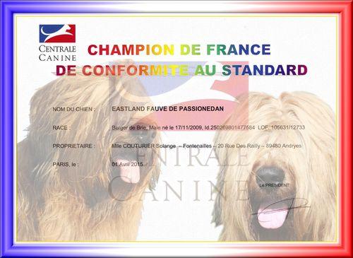 diplôme Champion France Eastland 2015