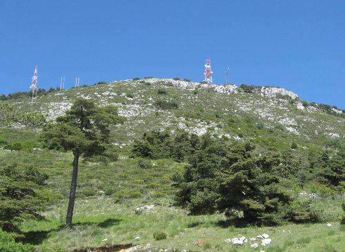 2011-06-09 Le Mont Lachens-017