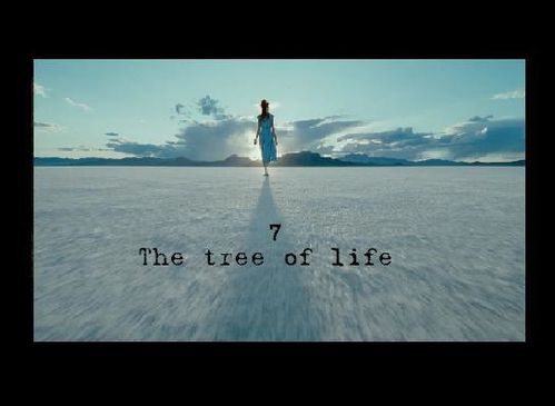 tree-of-life-top2.JPG
