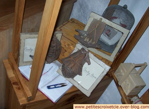 Mes-oiseaux--05-.JPG