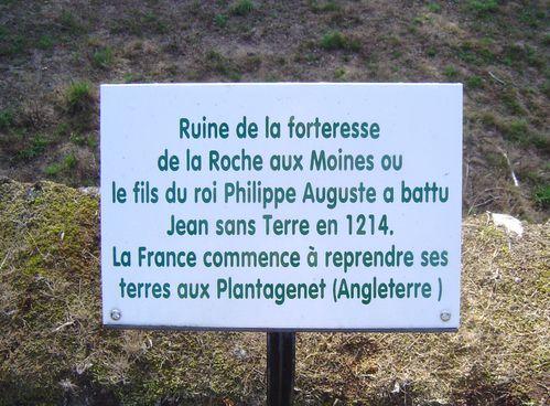 Savennières-joly-chateau-roche-aux-moines-grappe-allée-cyprès-panneau