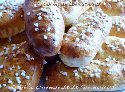 P1030166 (2)Petits pains au lait fermenté-border