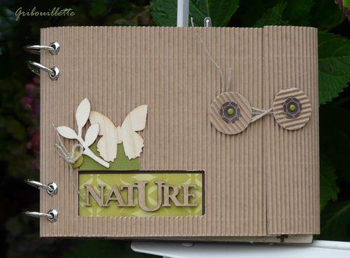 2011 Nature01