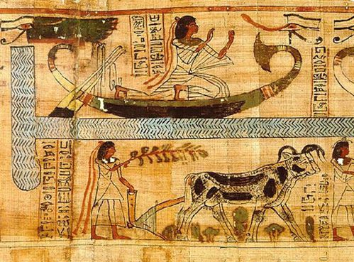 le livre des morts book of the dead egypte (6)