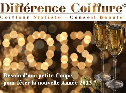 voeux 2013 copie coiffure L'OREAL, KERASTASE ANGERS, DIFFER