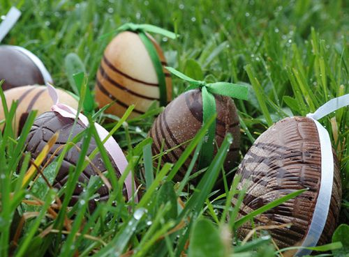 chasse-oeufs-paques