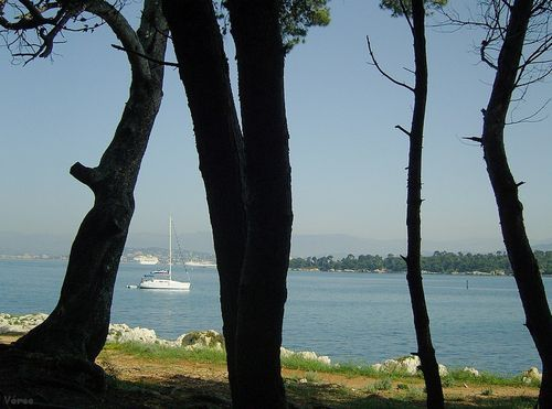 St-honorat-3.jpg