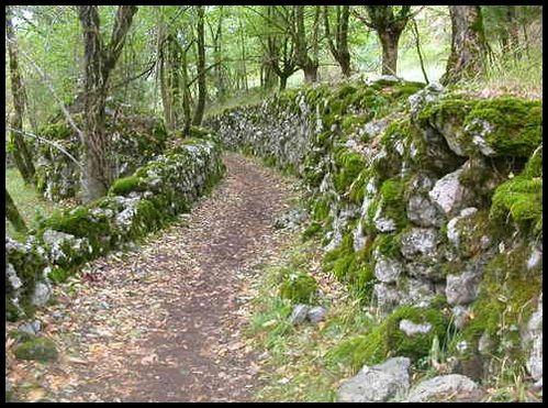 Chemin-de-Bramevaque.jpg
