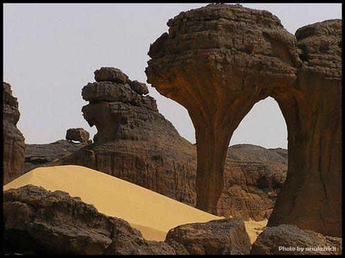 algerie-2011.jpg