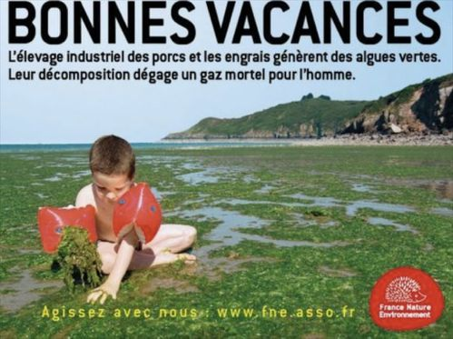 affiche agriculture algues