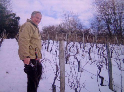 François Grether, Vigneron jurassien dans sa vigne,
