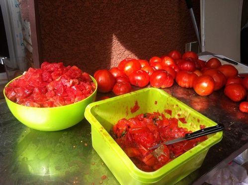 tomate 1042