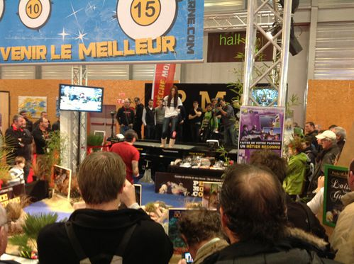 PMC salon nantes 2013 (10)