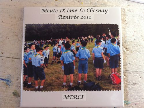 scout-toujours 4132
