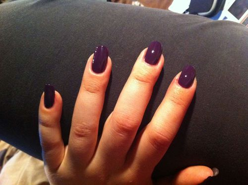 pinaud-violet-2.JPG