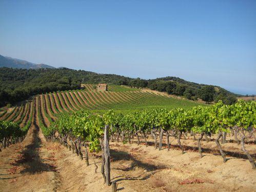 Corse-2008-Jacques-028.jpg