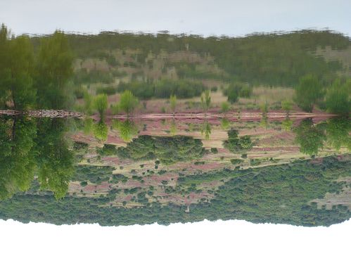 2012-06-06-Salagou (15)