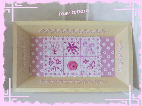 rose-tendre-1.JPG