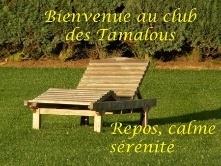 AA tamalous-copie