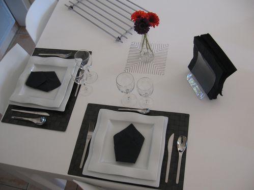 table-en-carton-048.JPG