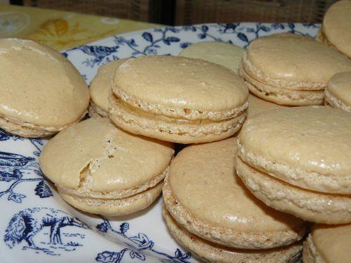 macarons vanille 2