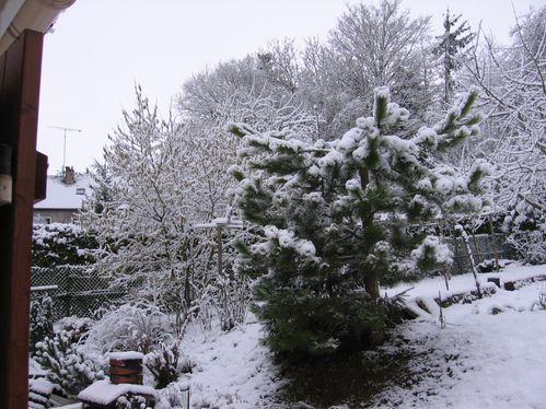neige-sur-mereville-13-2-09-004.jpg