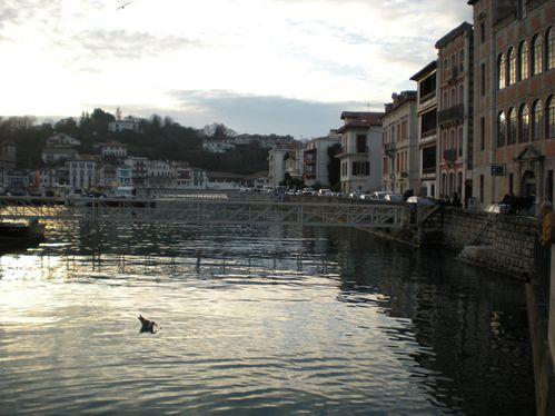 Balade-Biarritz-02-01-2010-031.jpg