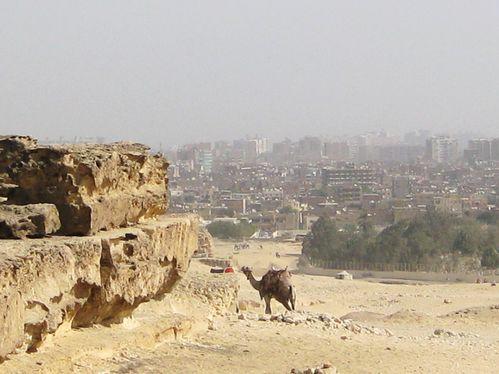 vue sur le Caire des pyramides egypte février 2010