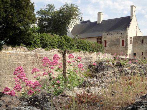 Chinon-forteresse-10-logis-.jpg